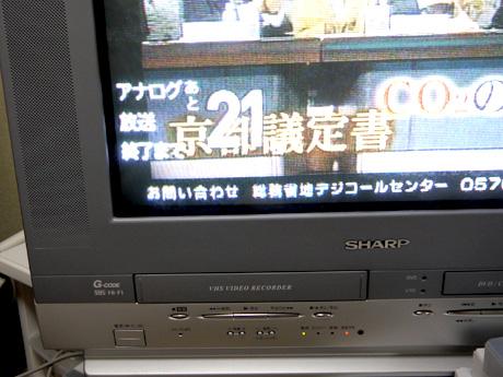 P1050382.jpg