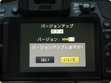 P1110920.jpg