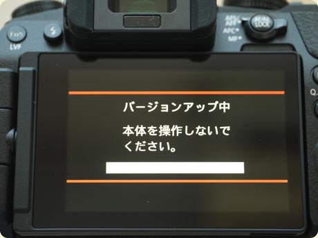 P1110923.jpg