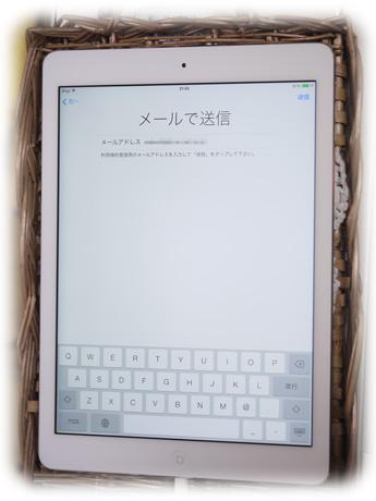 P1600182.jpg